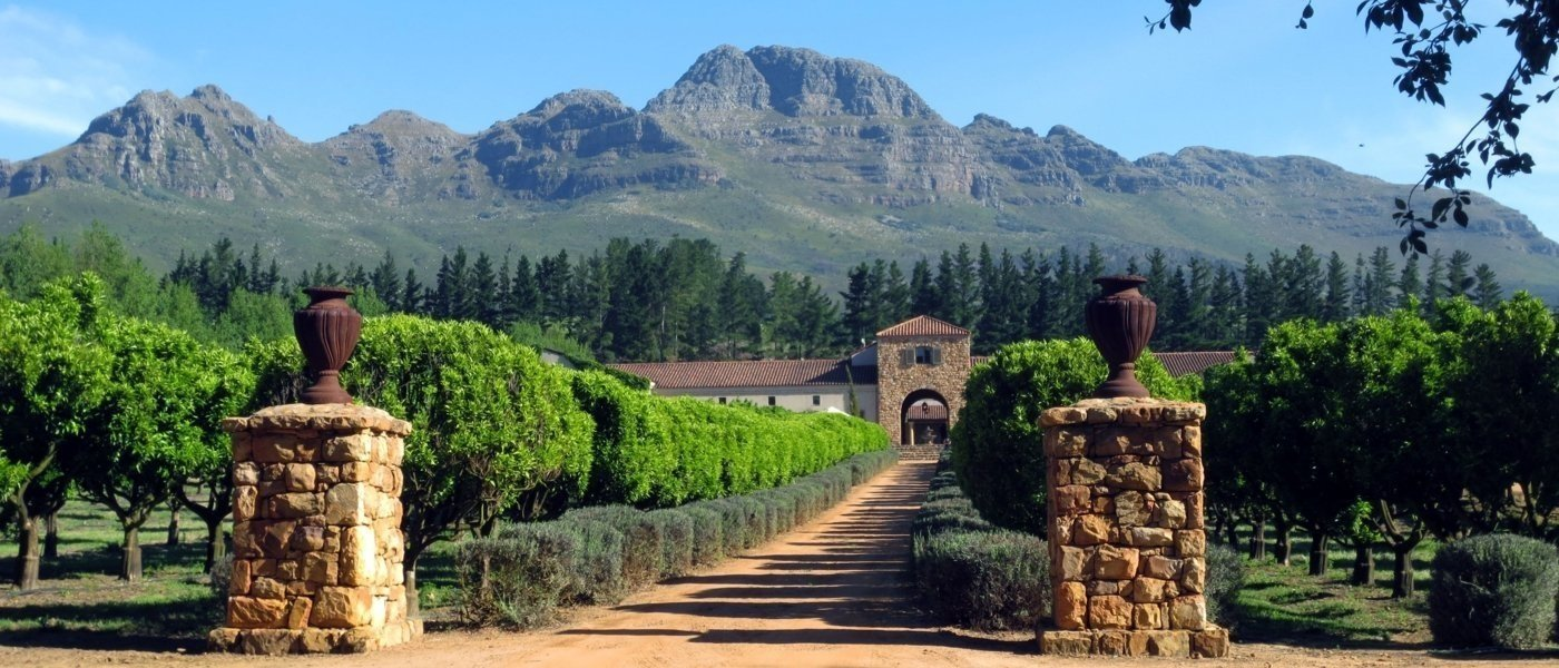 luxury winery tours - Wine Paths