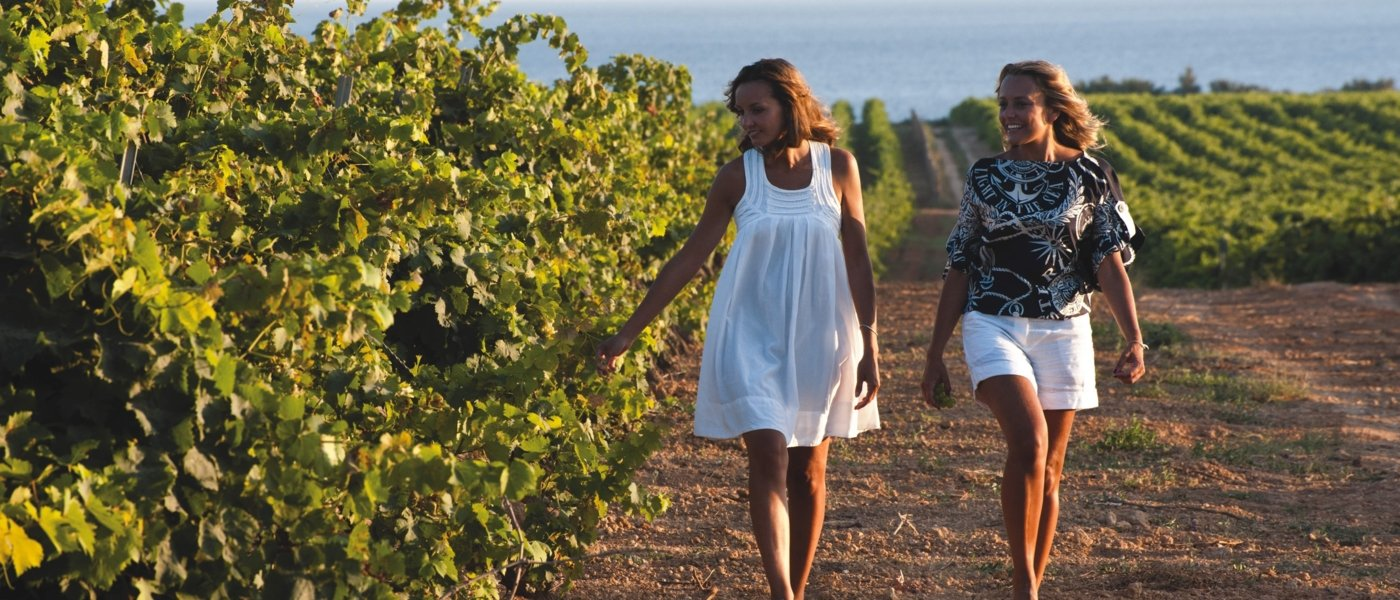 Local wine travel expert in Sicily