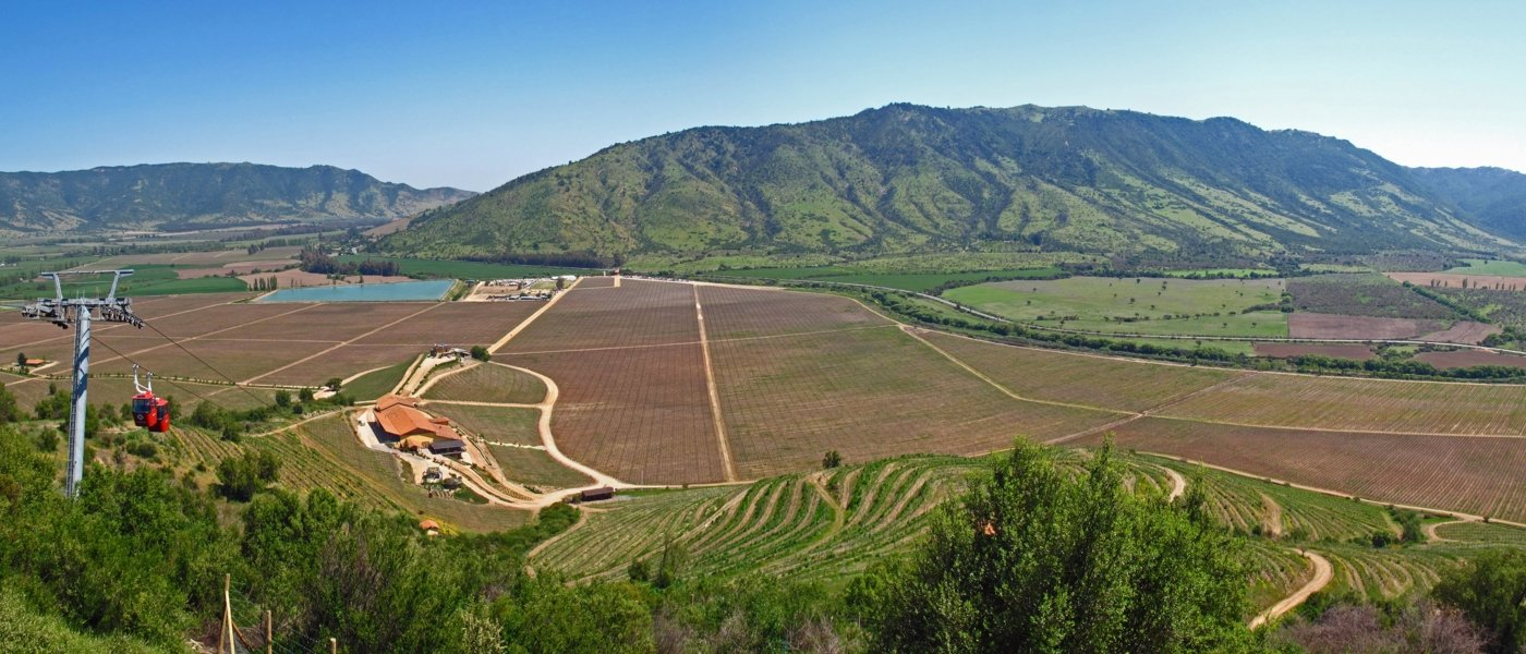 Colchagua Valley - Wine Paths