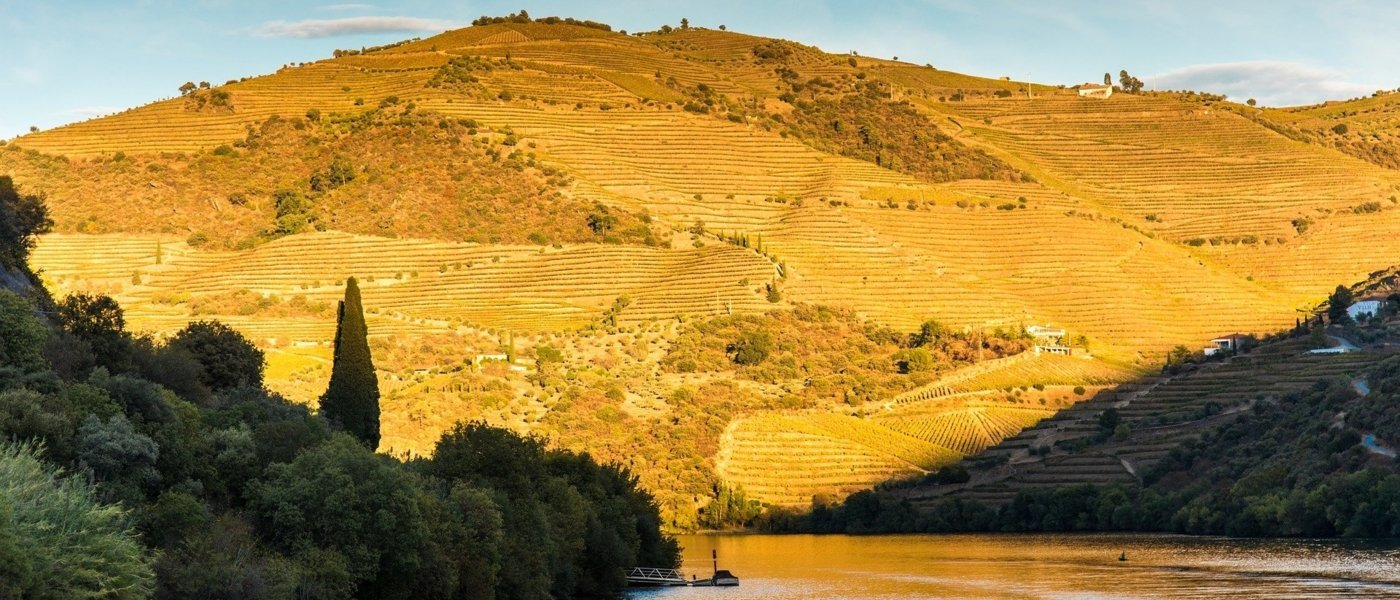 portugal wine tours - Wine Paths
