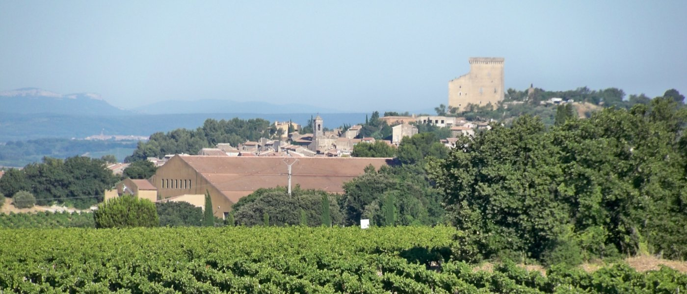 rhône valley wine tours - Wine Paths