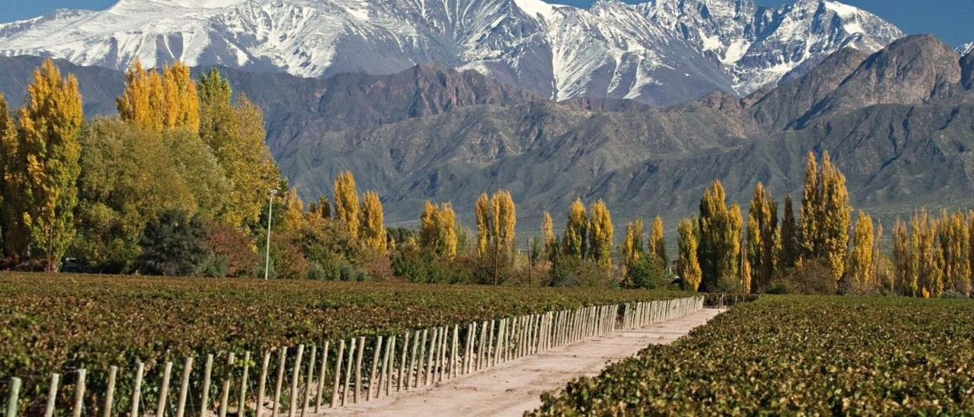 Luxury Itineraries in Argentina - Wine Paths
