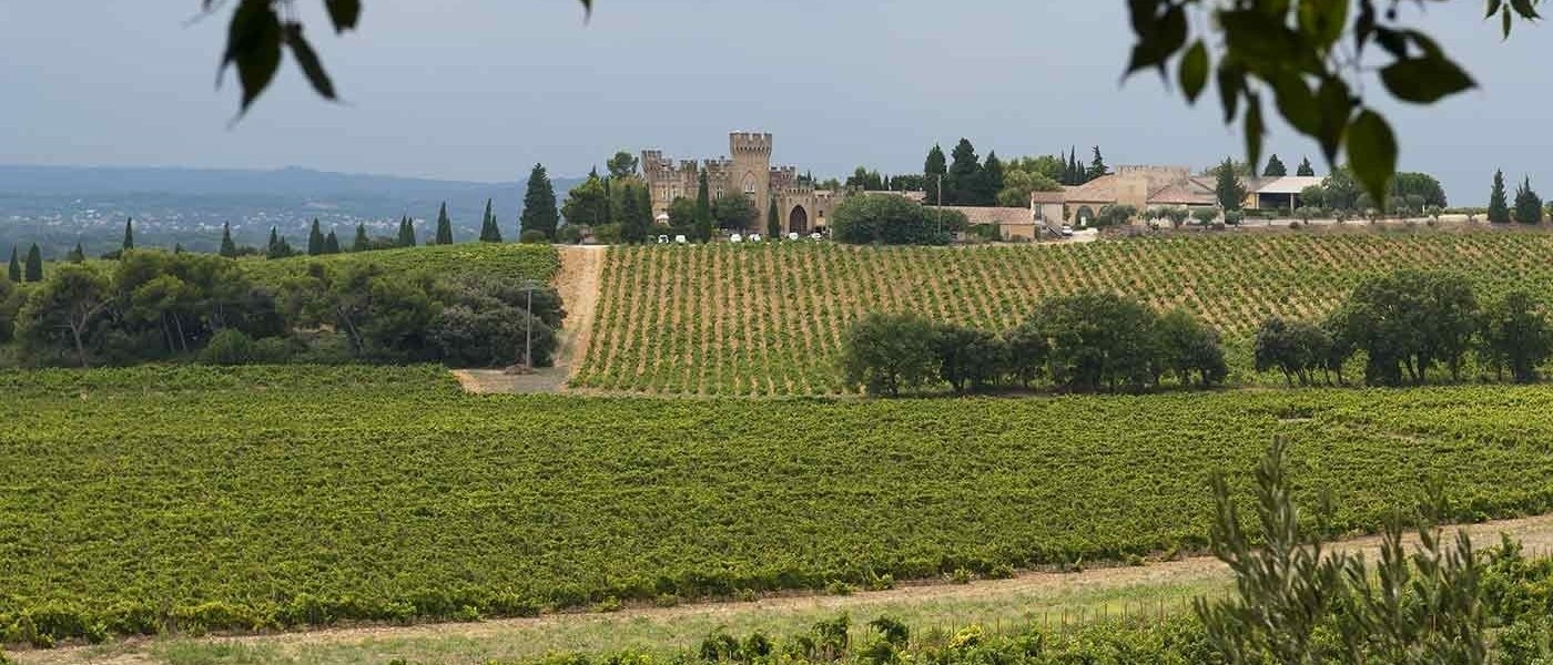 rhone valley wine tours - Wine Paths