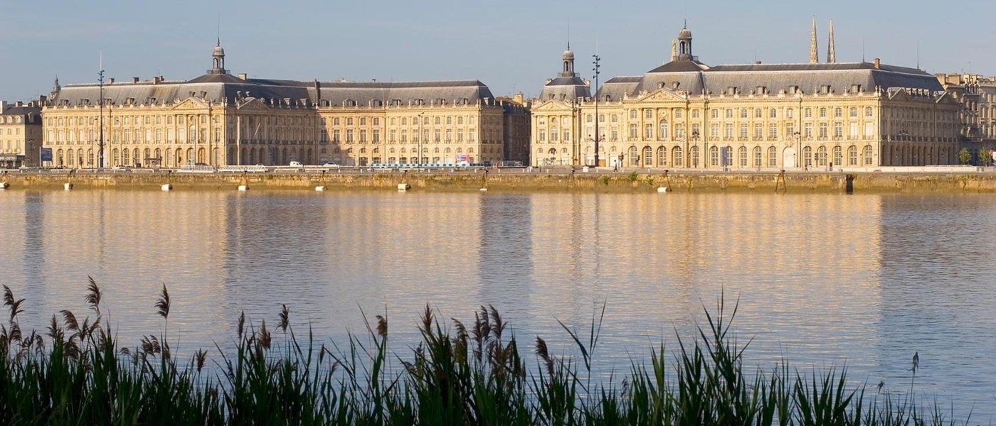 bordeaux wine tours - Wine Paths