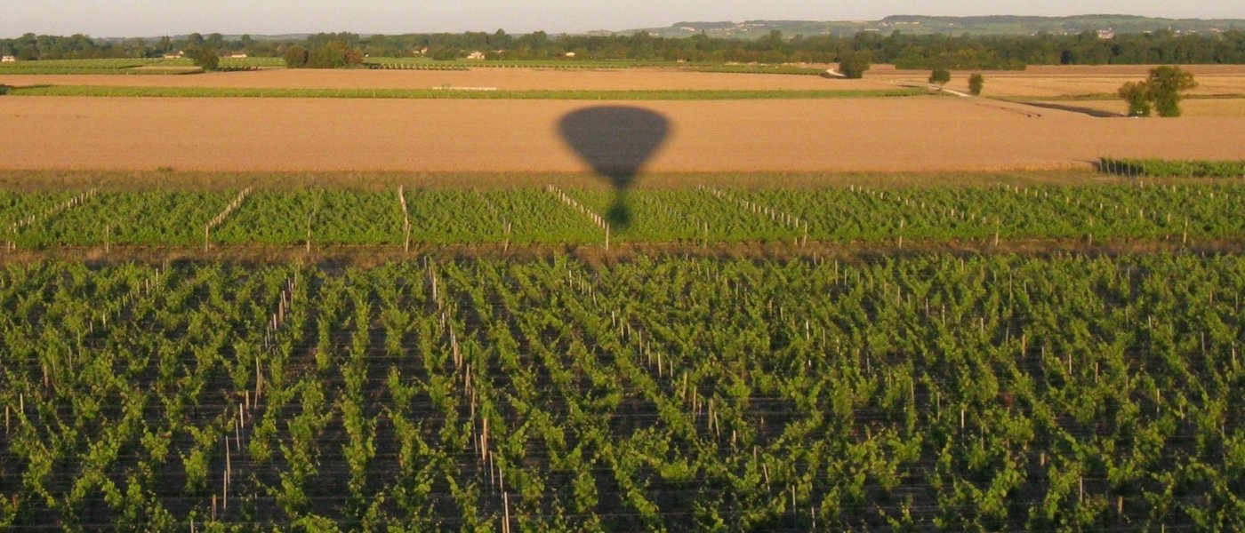 Hot air balloon flight above Cognac vineyards -  Wine Paths