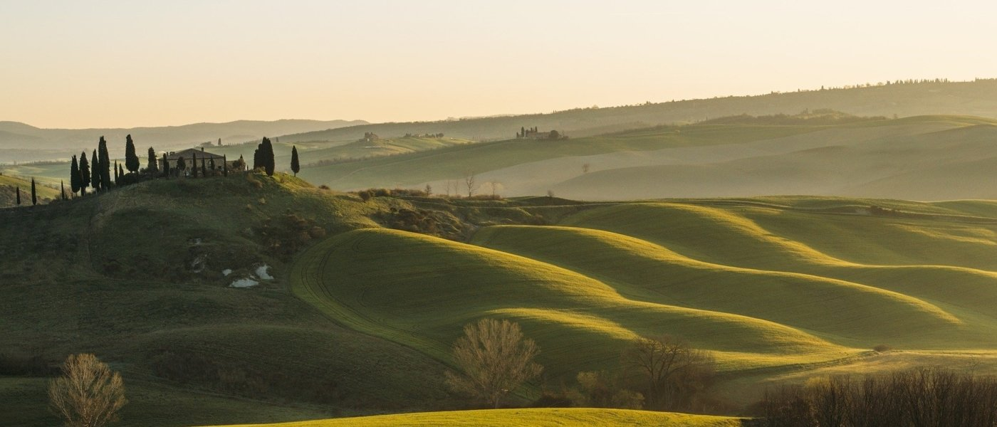 best wine tours in tuscany - Wine Paths
