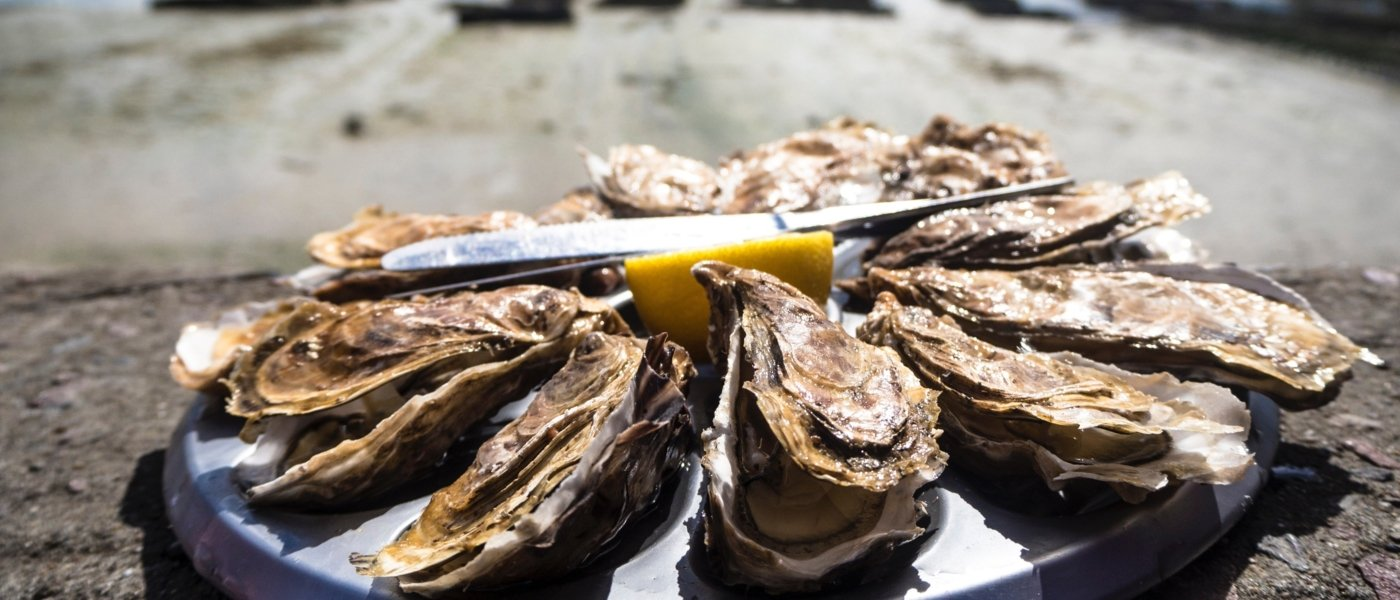 Bespoke Oyster Food in Ireland - Wine Paths
