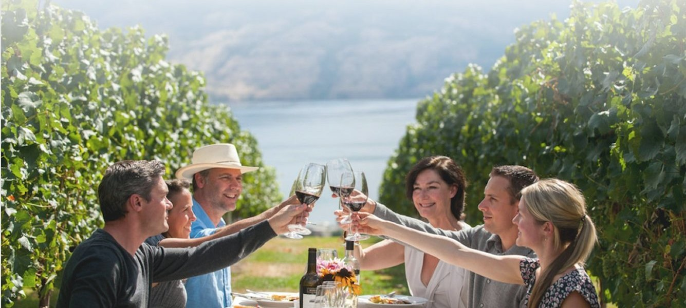best wine tours in Europe - Wine Paths