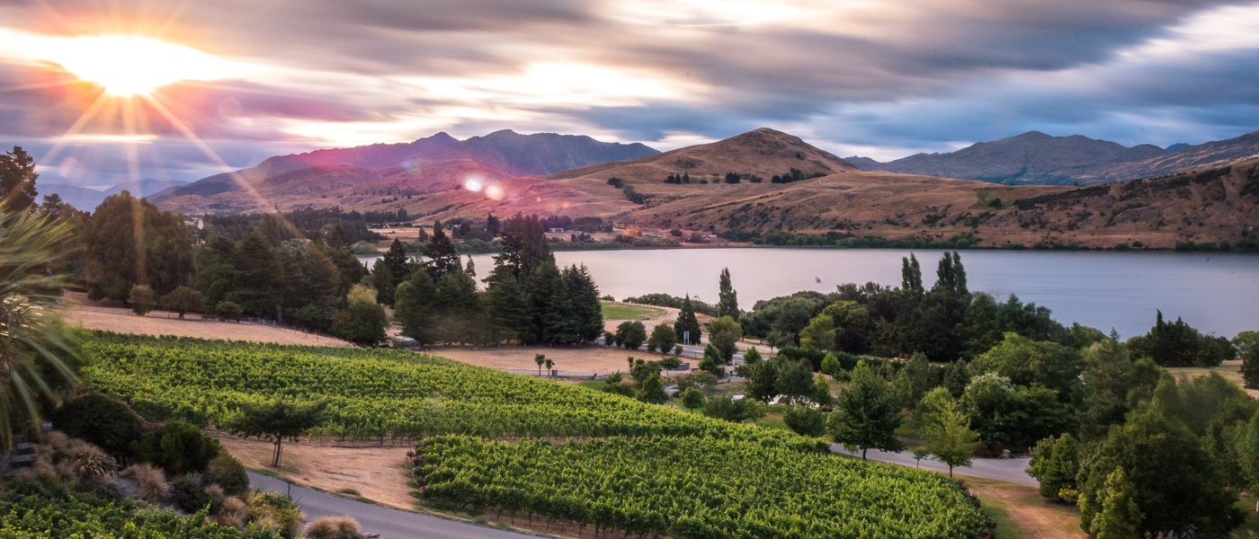 new zealand wine tours - Wine Paths