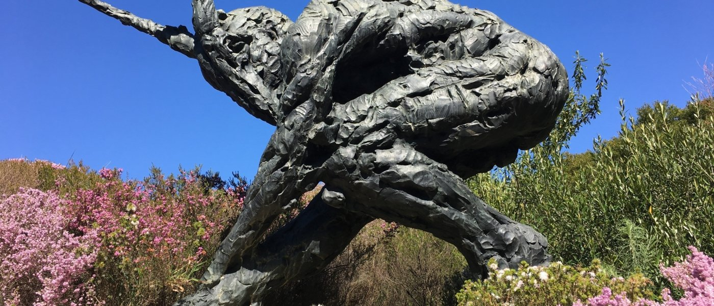 Exploring the Musical Vines & Sculptures of Stellenbosch - Wine Paths