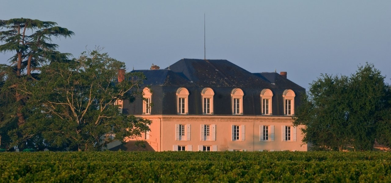 Vineyard Chateau Guiraud