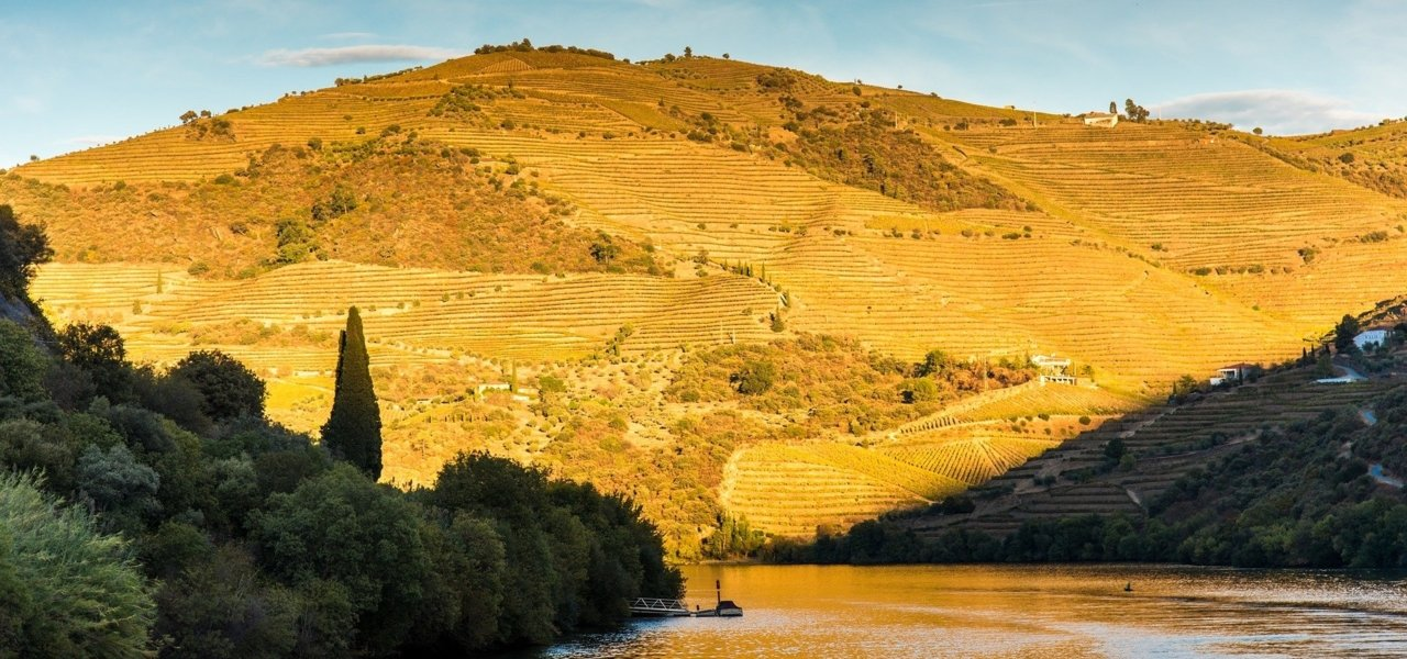 Douro Valley - Wine Paths