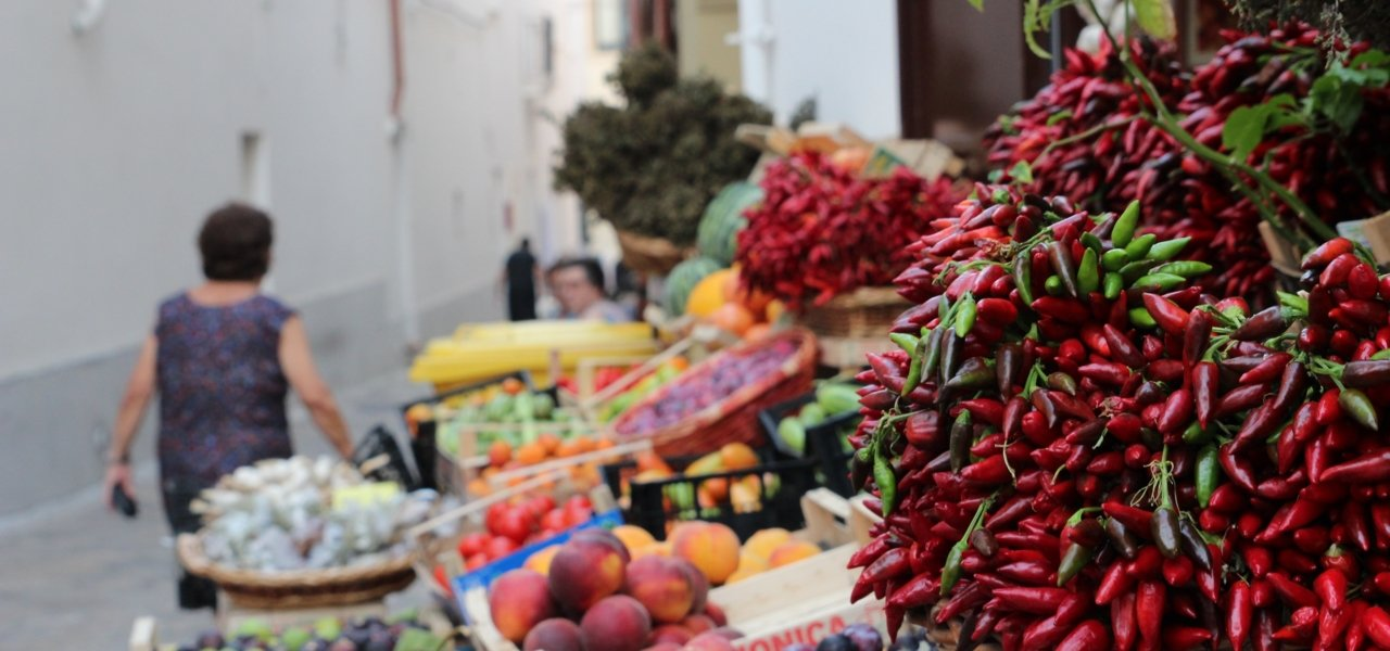 food and wine tour in puglia