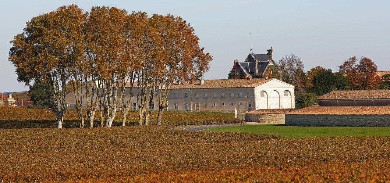 Vineyards and Château Mouton Rothschilds