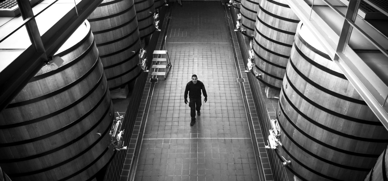 wine cellars in black and white