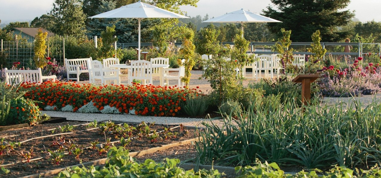 DeLoach Vineyards Gardens