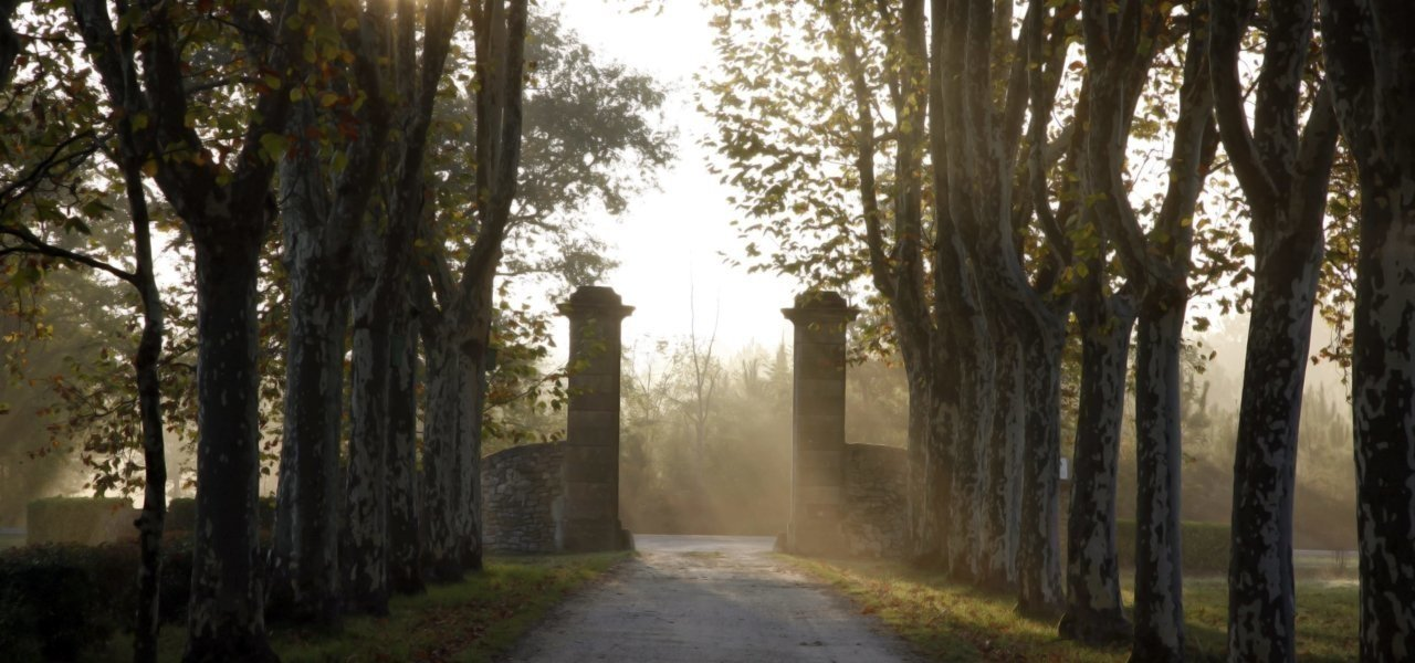Entrance Chateau Guiraud