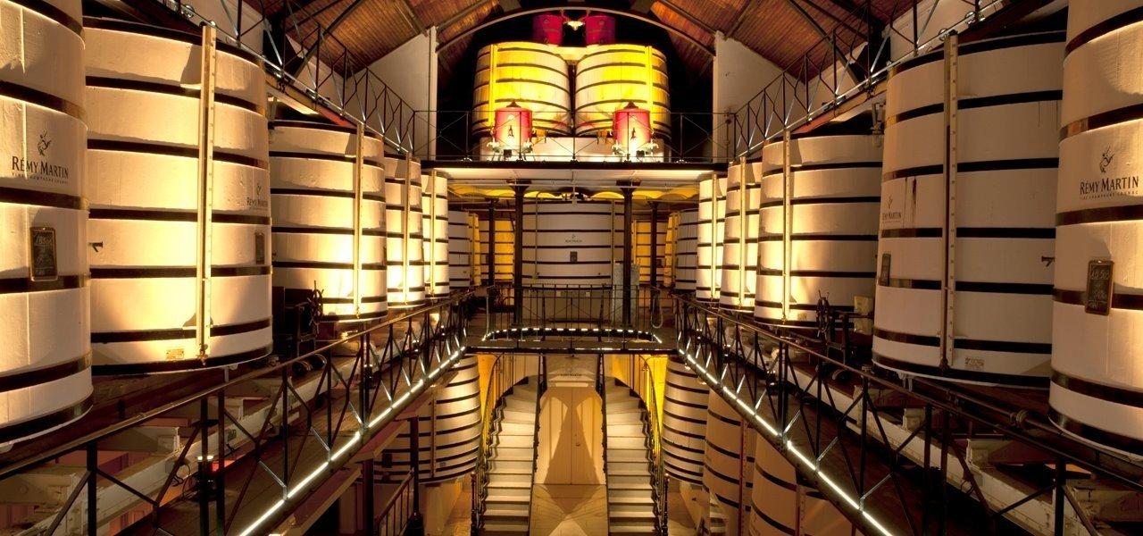 Rémy Martin - Francis cellar