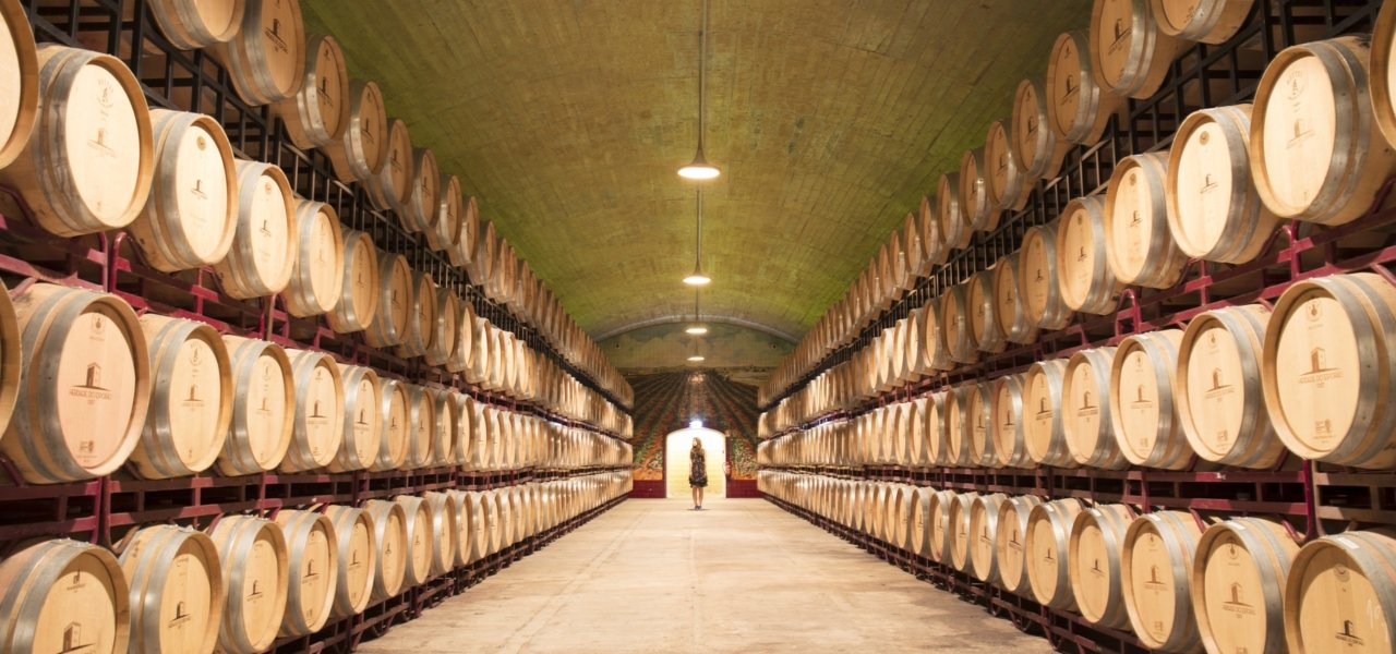 Oak Barrels Cellar