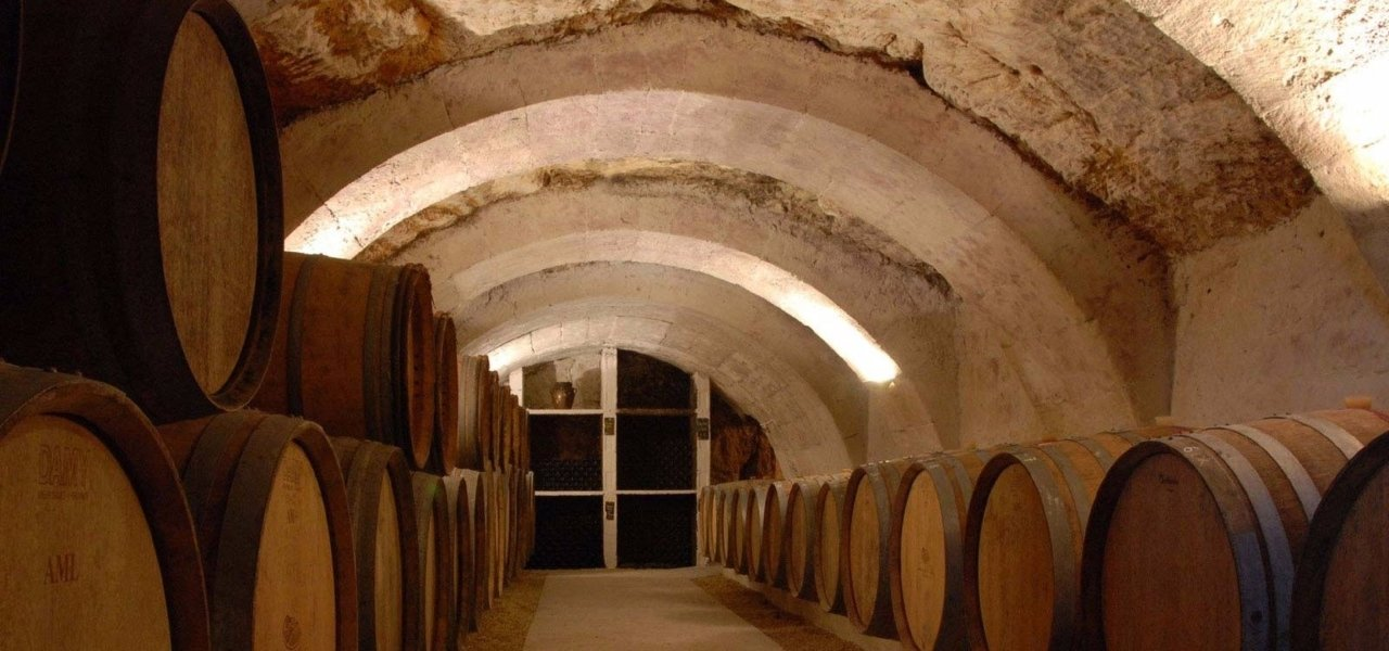 Guided tour at a winery
