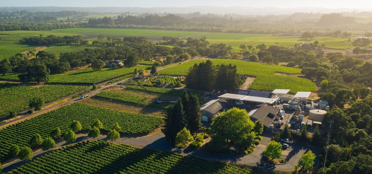DeLoach Vineyards in the heart of the Russian River Valley
