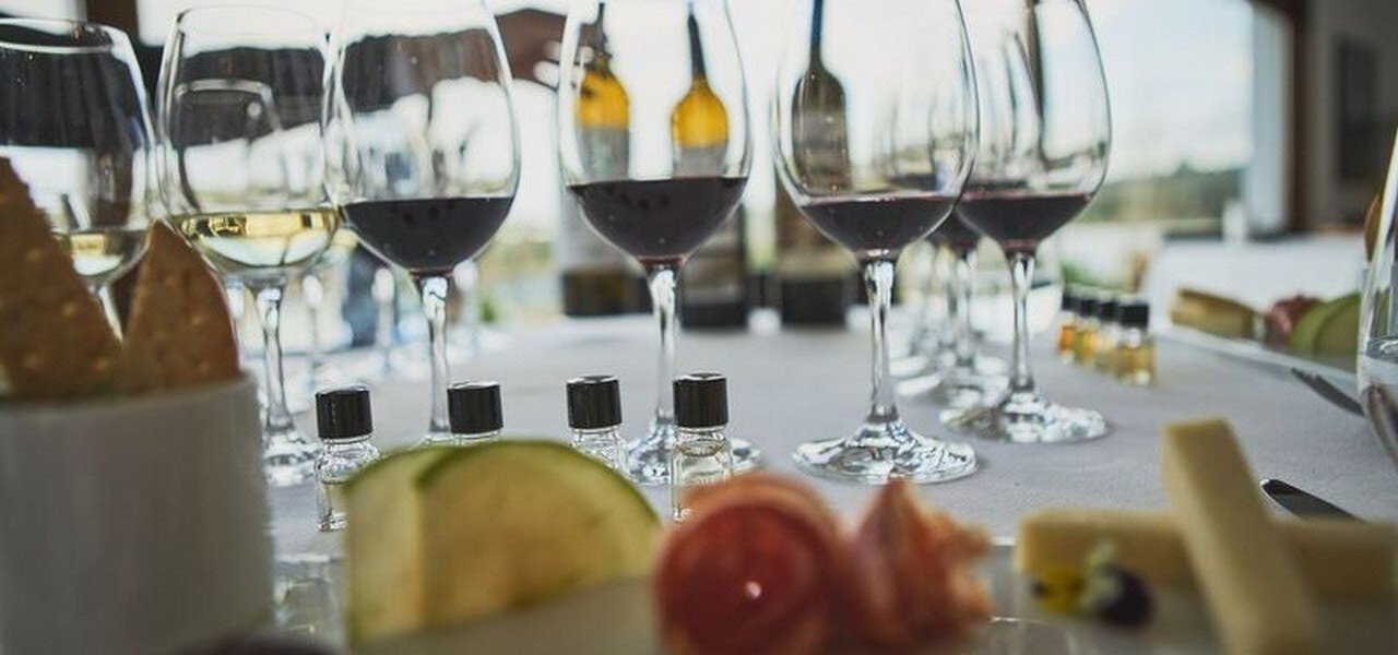food and wine pairing and vineyards