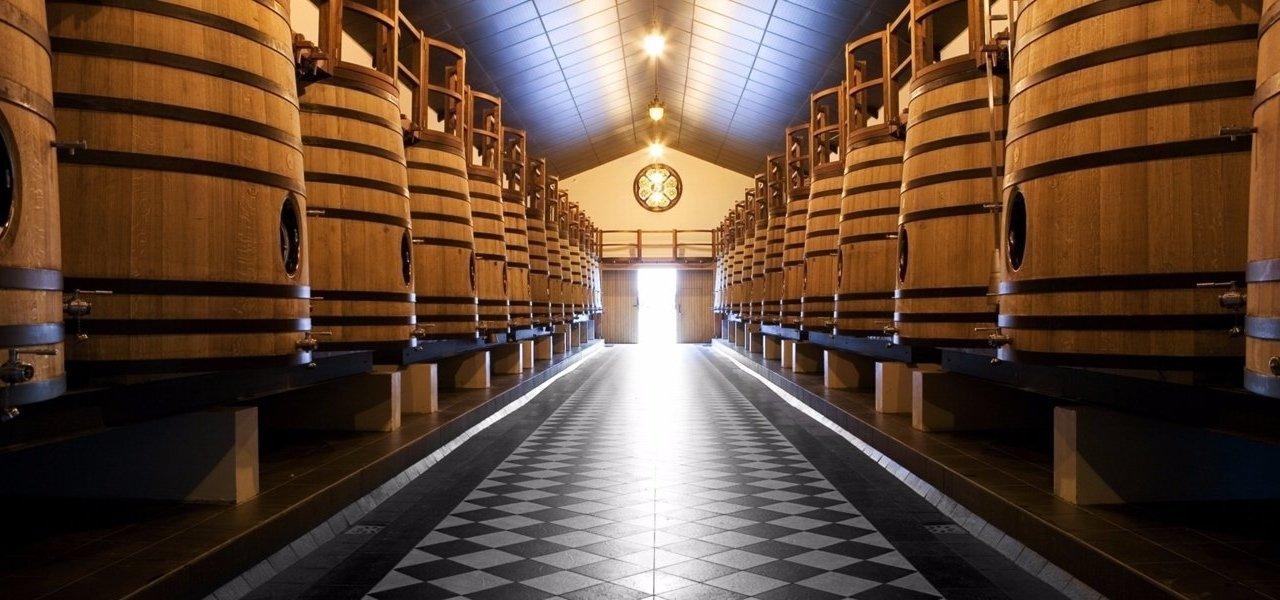 Cellars Chateau Pape Clement
