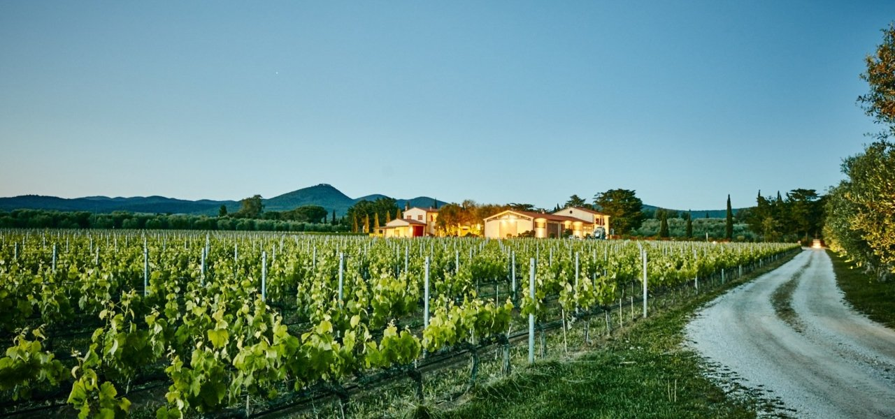 Winery Campo alla Sughera - wine tours tuscany - Wine Paths