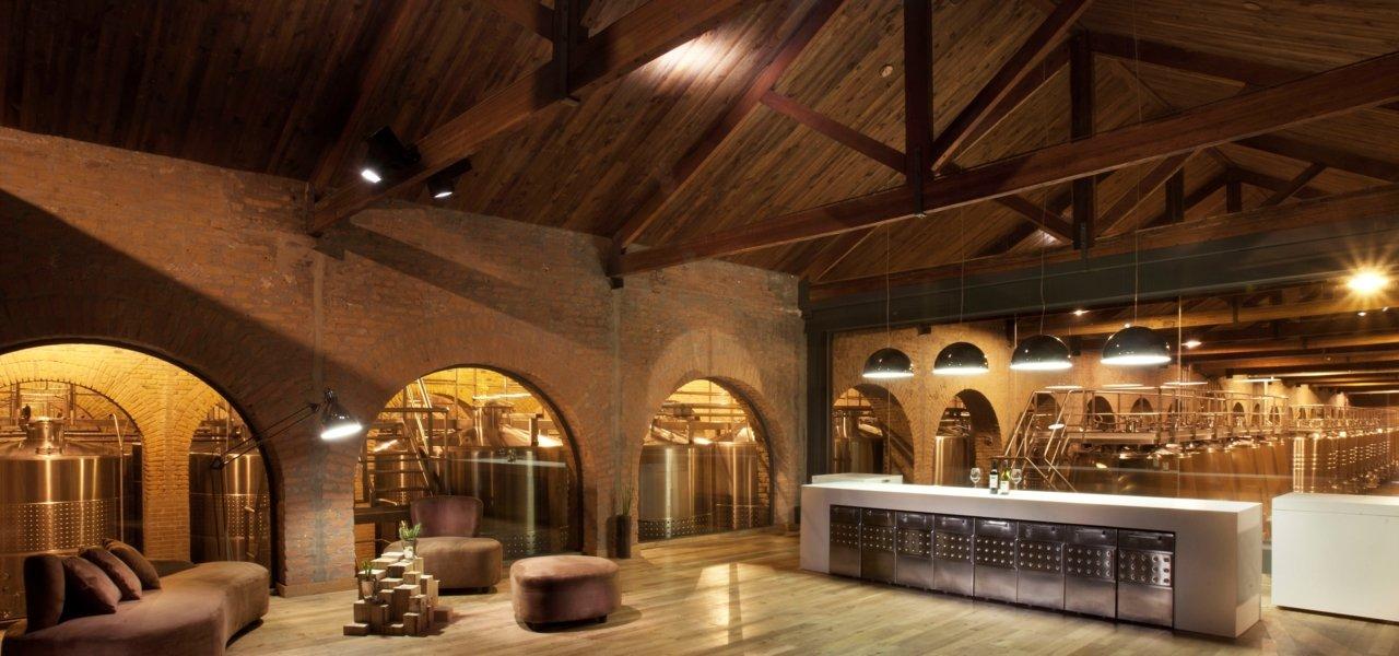 Visit Terrazas De Los Andes In Argentina Wine Paths