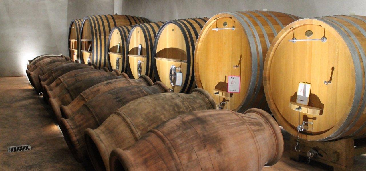 Wine tour in Corsica