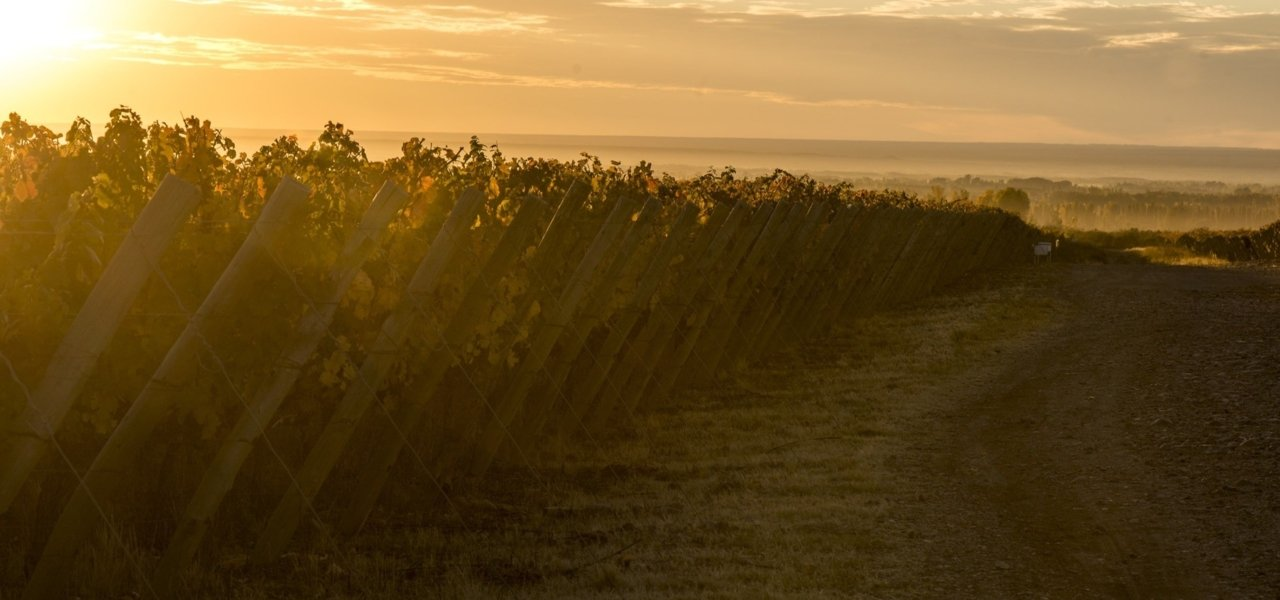 sunset at clos de los siete