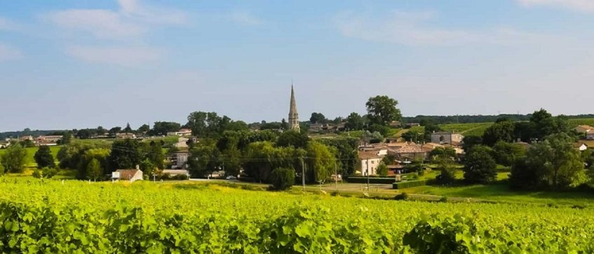 best bordeaux wine tours - Wine Paths