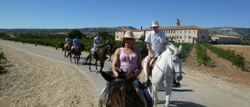 luxury horse riding experience - Wine Paths