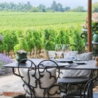 Partner One Michelin Star restaurant in the heart of the vines photo